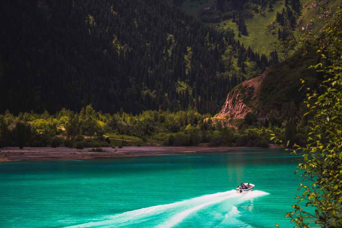 white speed boat on body of water across green trees